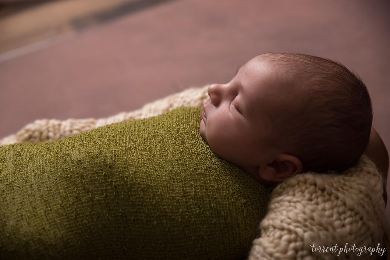 Chase newborn  (38 of 96)