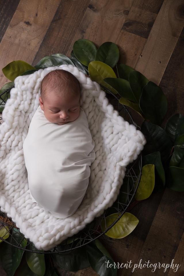 Chase newborn  (31 of 96)