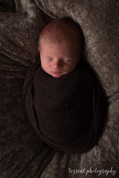 Cole newborn session (31 of 78)