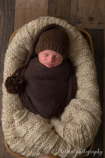 Cole newborn session (33 of 78)