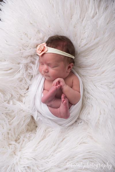 Della Bitker Newborn (23 of 60)