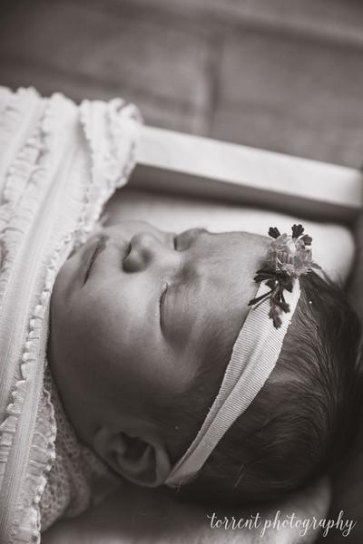 Della Bitker Newborn (44 of 60)