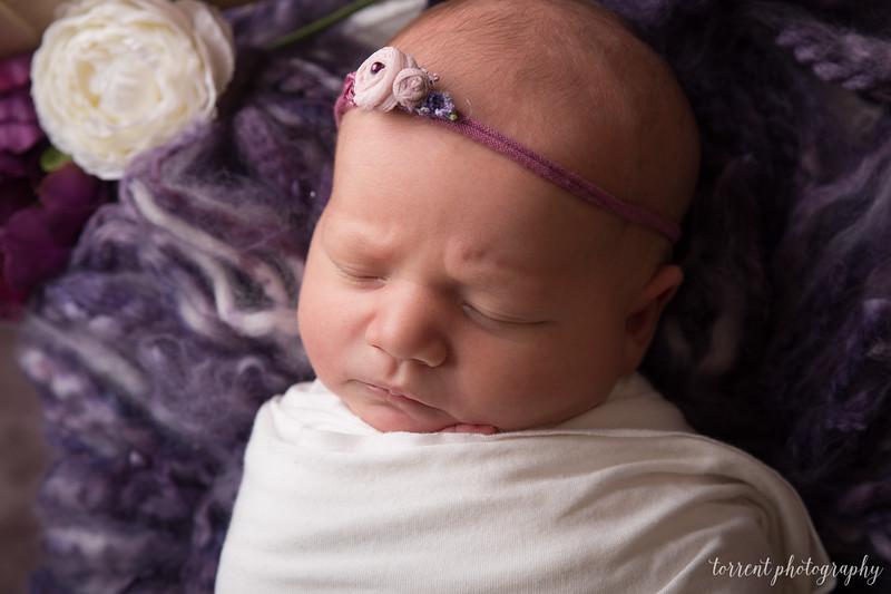 Evi Newborn  (3 of 42)