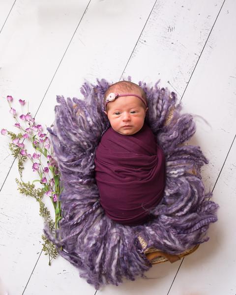 Halie Toukatly Newborn (6 of 88)