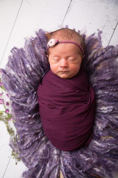 Halie Toukatly Newborn (9 of 88)