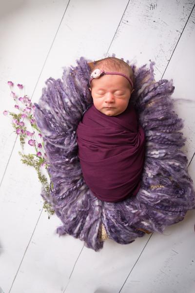 Halie Toukatly Newborn (10 of 88)
