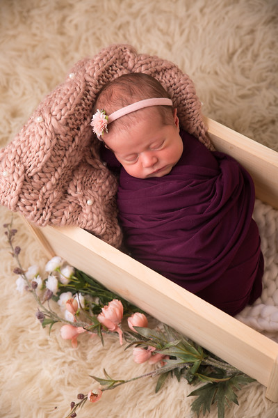 Halie Toukatly Newborn (16 of 88)