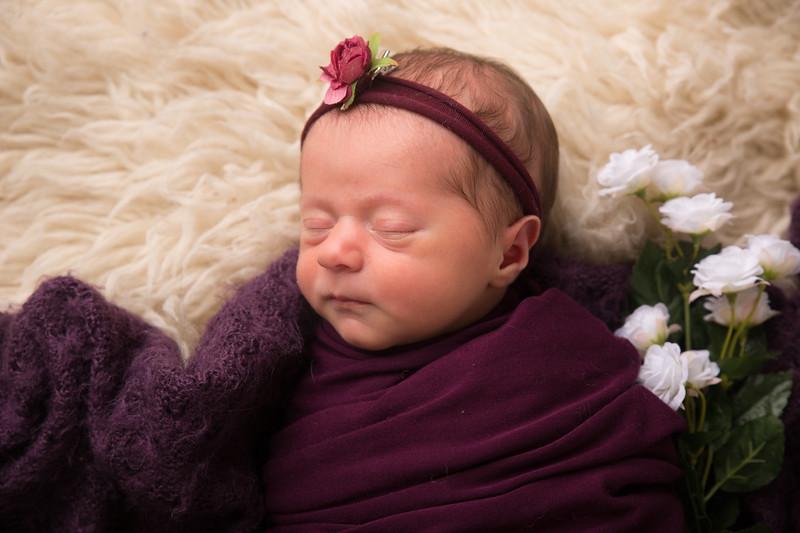 Halie Toukatly Newborn (27 of 88)