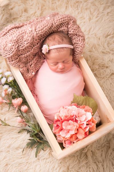 Halie Toukatly Newborn (17 of 88)