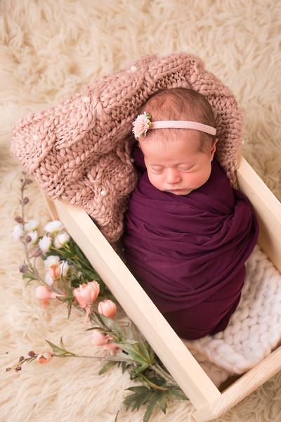 Halie Toukatly Newborn (14 of 88)