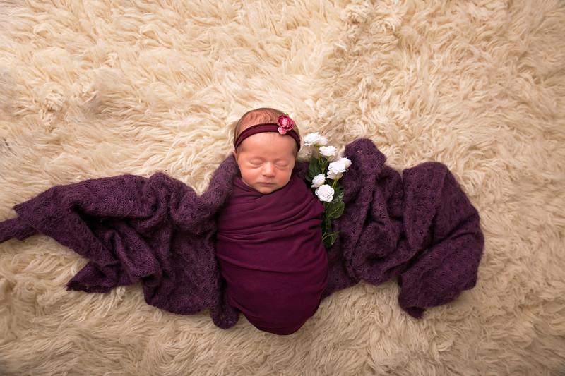 Halie Toukatly Newborn (30 of 88)