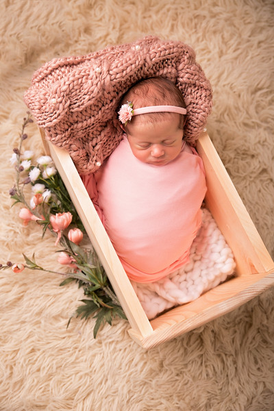 Halie Toukatly Newborn (18 of 88)