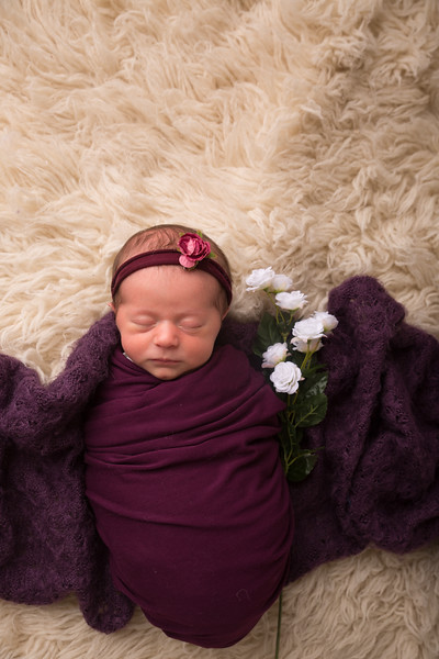 Halie Toukatly Newborn (29 of 88)