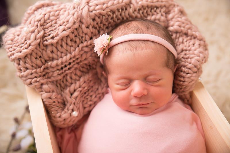 Halie Toukatly Newborn (19 of 88)