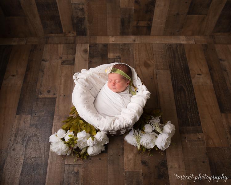 Halie Toukatly Newborn (31 of 88)