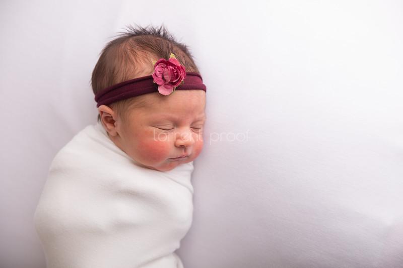 Heather Roberts Newborn (5 of 80)