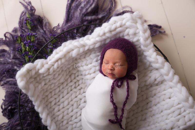Heather Roberts Newborn (32 of 80)