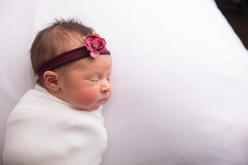 Heather Roberts Newborn (4 of 80)