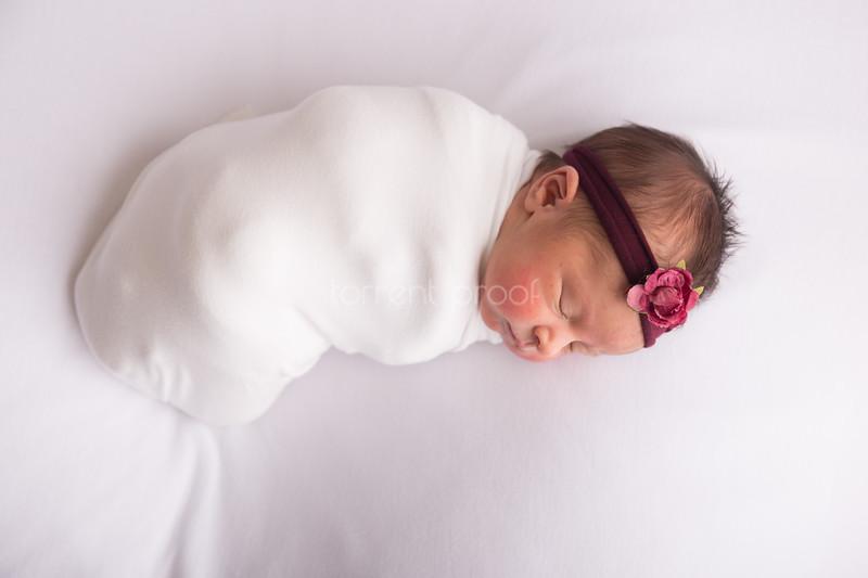 Heather Roberts Newborn (3 of 80)