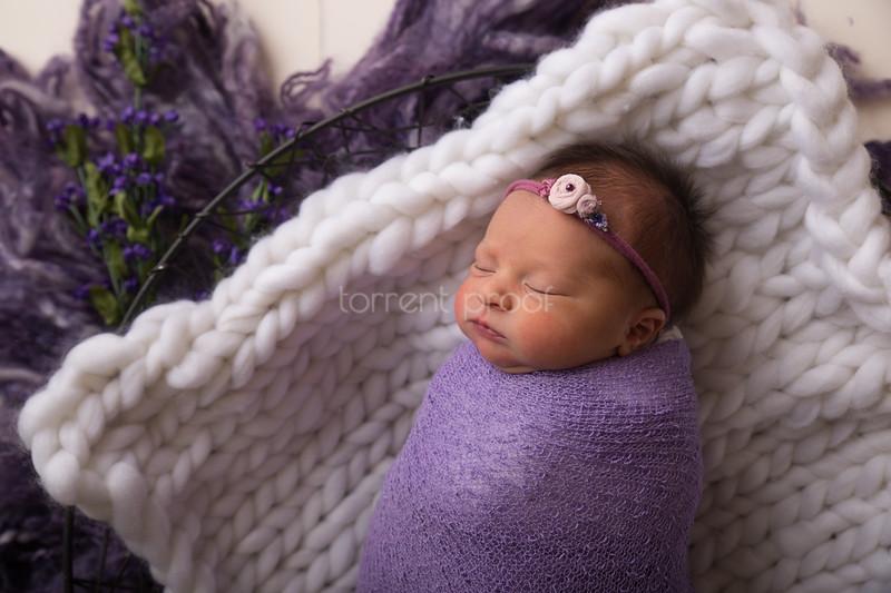 Heather Roberts Newborn (34 of 80)