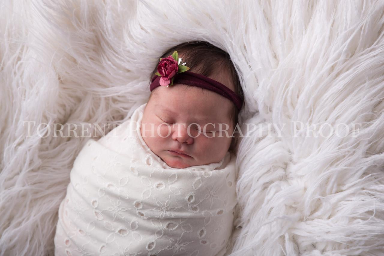 Jess Wood newborn  (42 of 86)