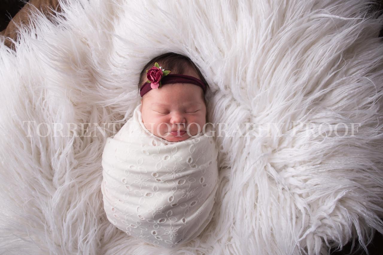 Jess Wood newborn  (39 of 86)