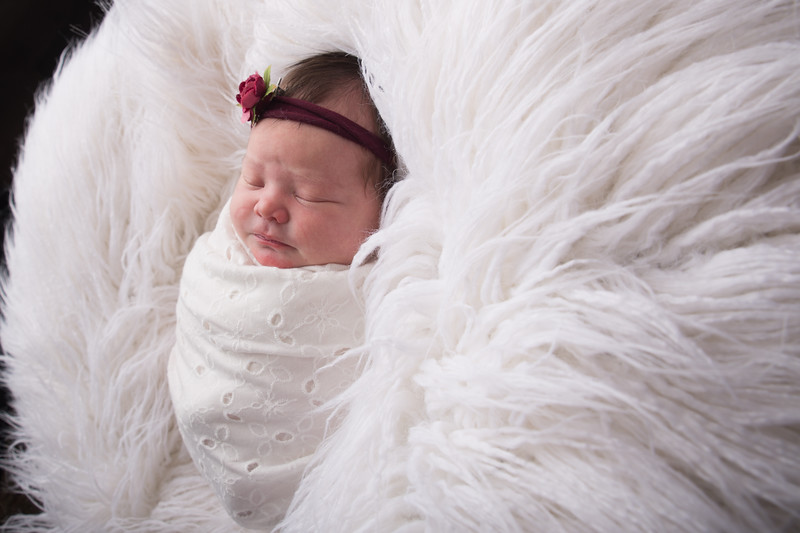 Jess Wood newborn  (40 of 86)