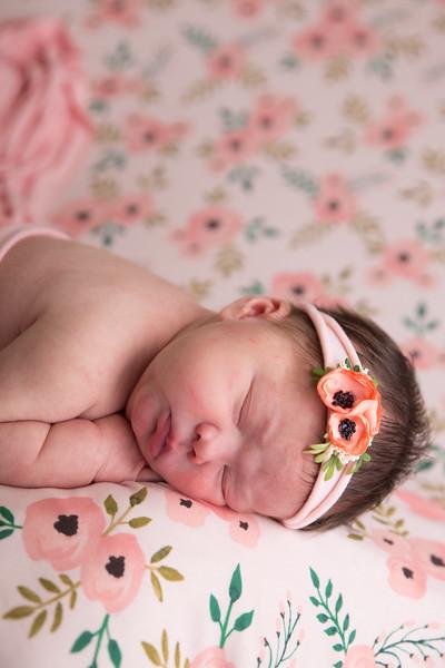 Jess Wood newborn  (13 of 86)