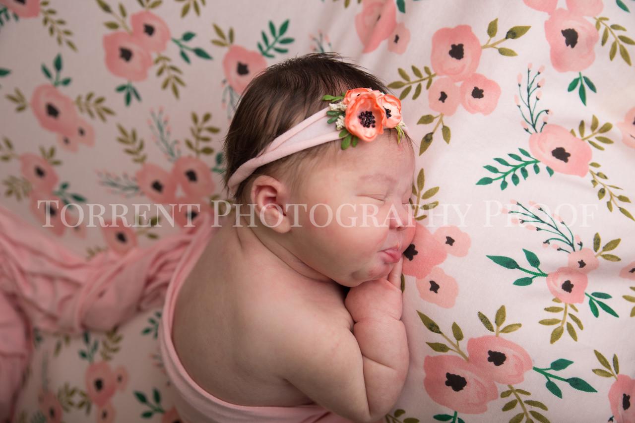 Jess Wood newborn  (11 of 86)