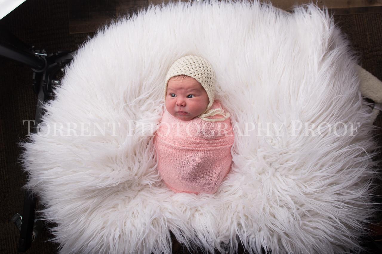 Jess Wood newborn  (34 of 86)