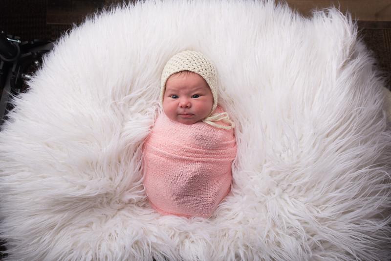 Jess Wood newborn  (33 of 86)