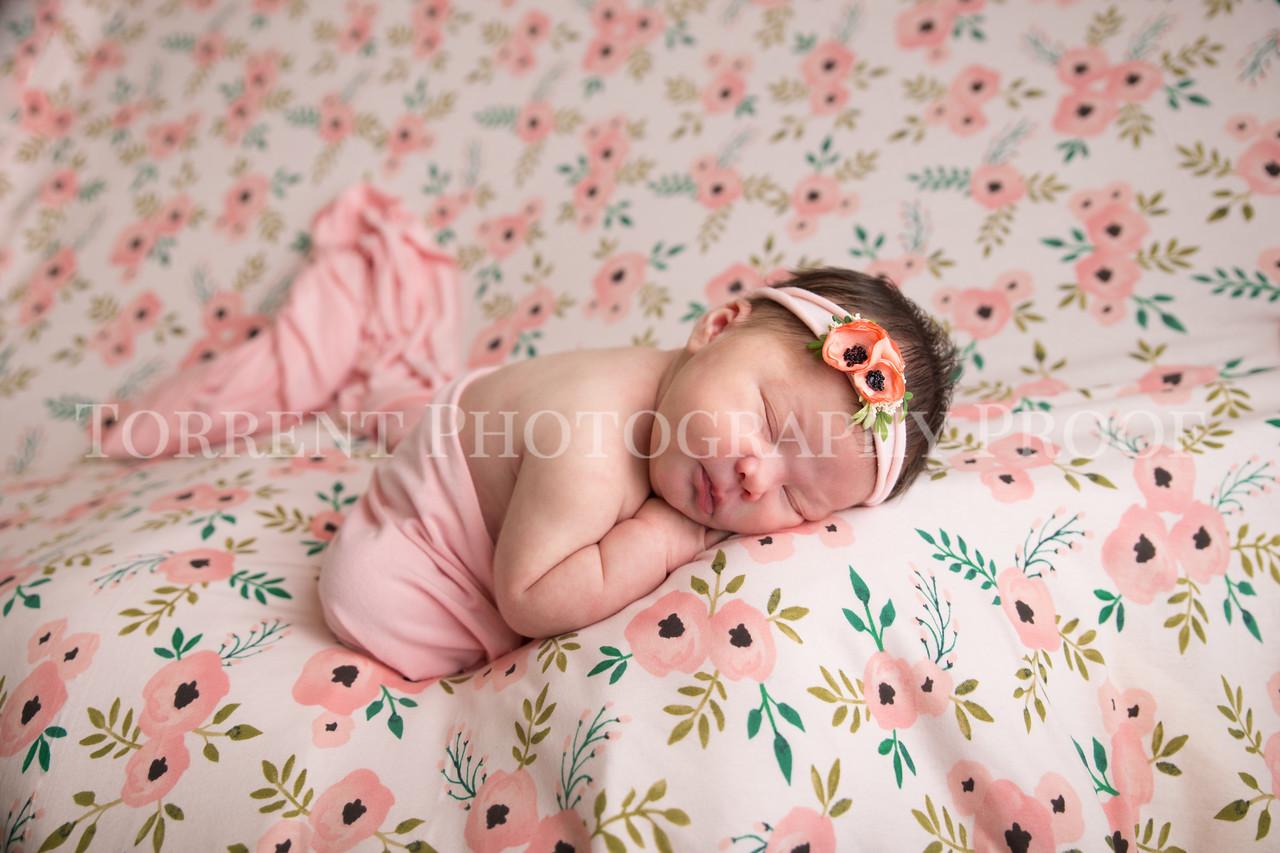 Jess Wood newborn  (12 of 86)