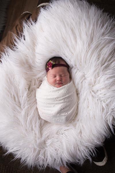 Jess Wood newborn  (41 of 86)