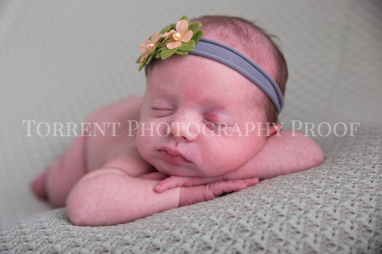 Jessica Francis Newborn Twins (17 of 42)