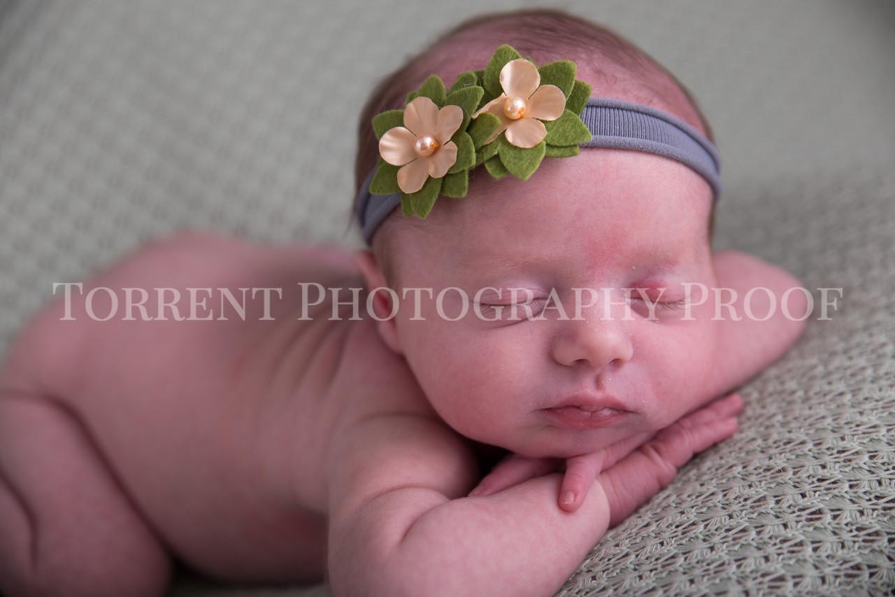 Jessica Francis Newborn Twins (18 of 42)