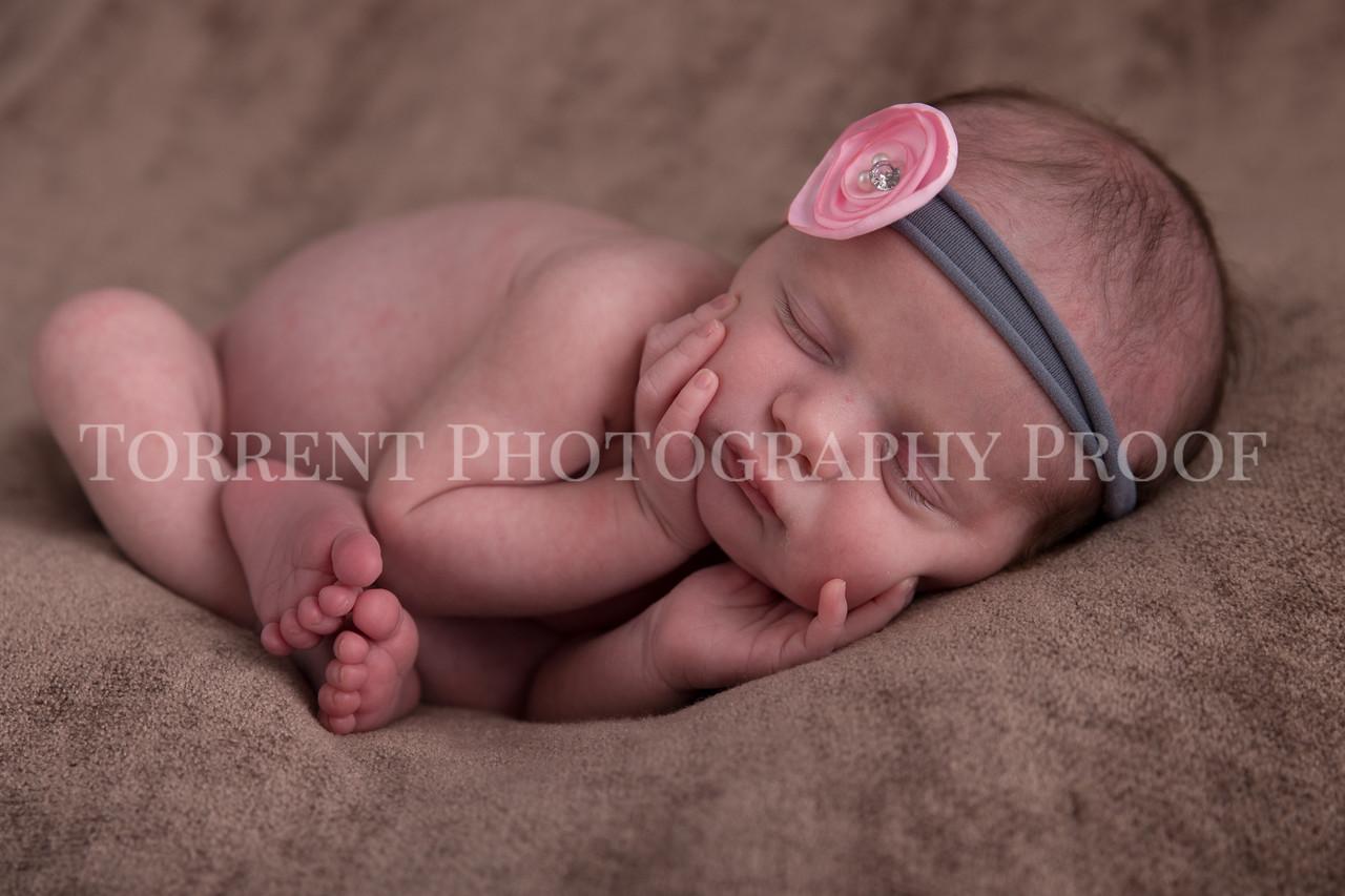 Jessica Francis Newborn Twins (7 of 42)