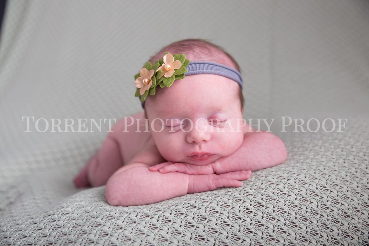 Jessica Francis Newborn Twins (14 of 42)