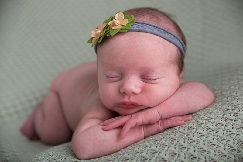 Jessica Francis Newborn Twins (15 of 42)