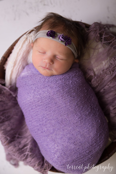 Jocelyn Newborn  (28 of 72)
