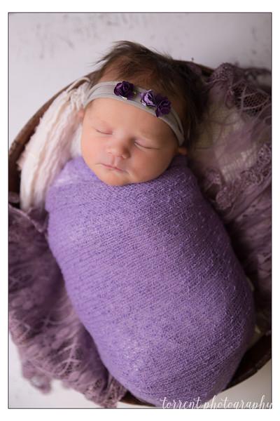 Jocelyn Newborn  (27 of 72)