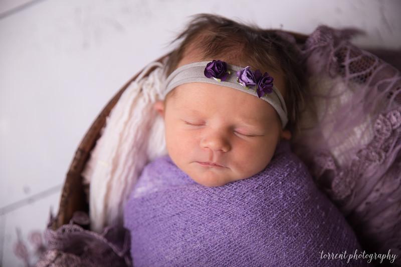 Jocelyn Newborn  (29 of 72)