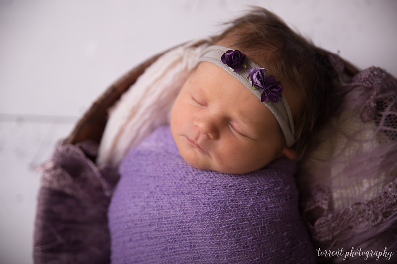 Jocelyn Newborn  (26 of 72)