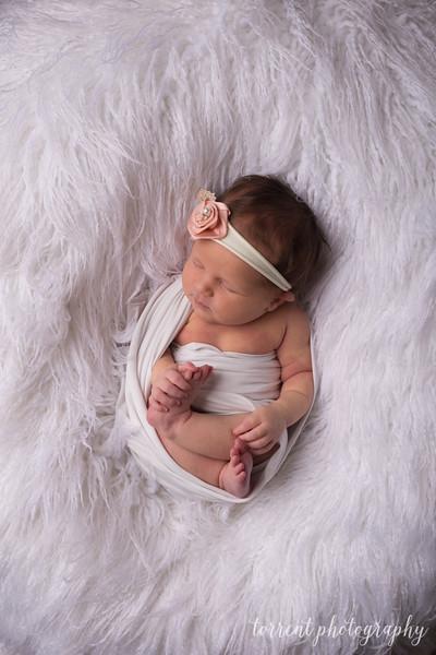 Jocelyn Newborn  (48 of 72)