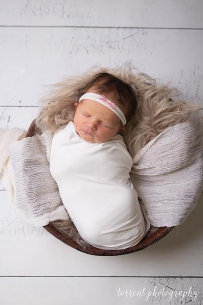 Jocelyn Newborn  (22 of 72)
