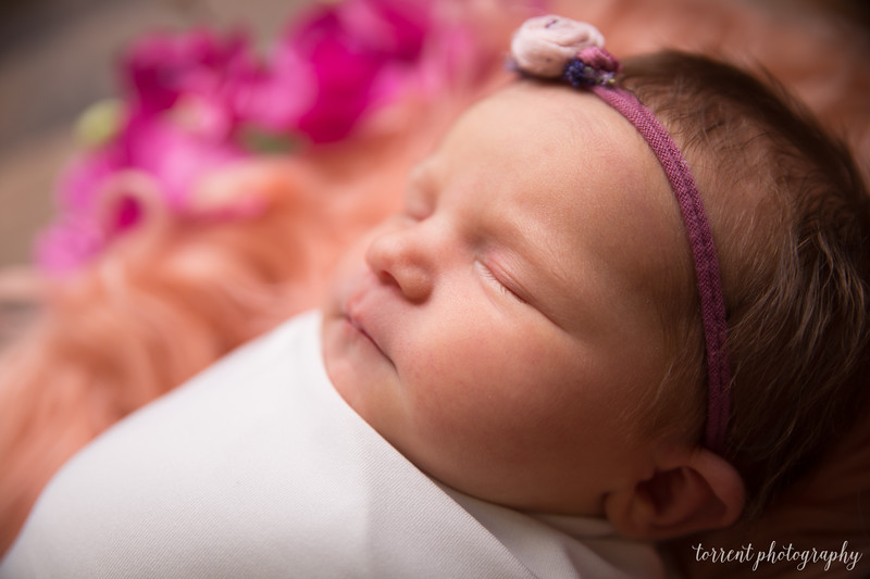 Jocelyn Newborn  (16 of 72)