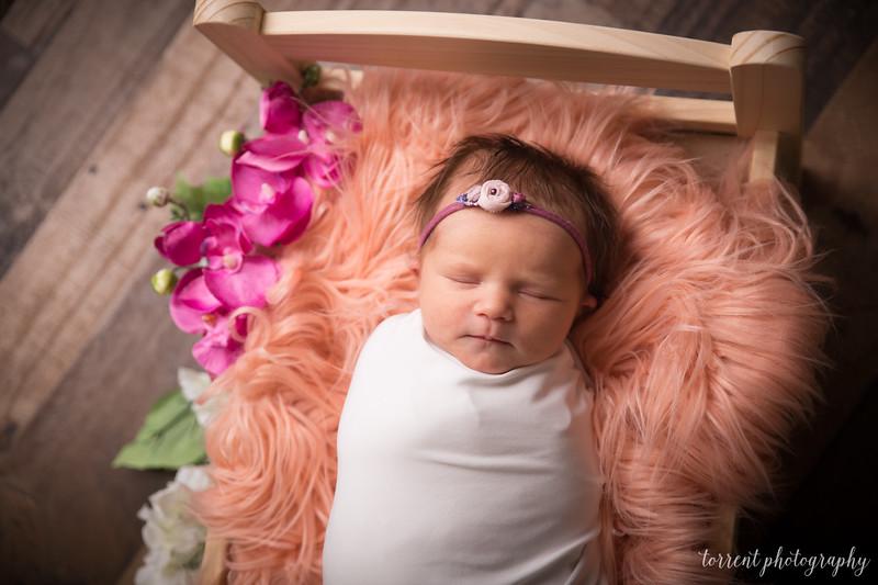 Jocelyn Newborn  (13 of 72)