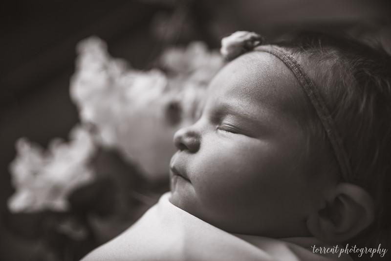 Jocelyn Newborn  (18 of 72)