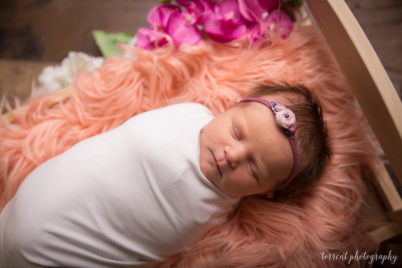 Jocelyn Newborn  (15 of 72)