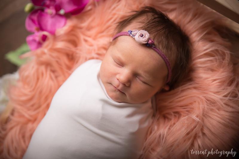 Jocelyn Newborn  (14 of 72)