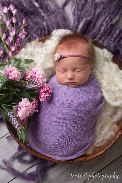 Kaylee Koester newborn (50 of 63)